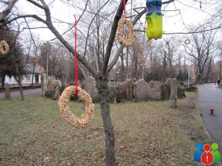 Маленькие криворожане украсили новогодними игрушками парк Правды (ФОТО), фото-20
