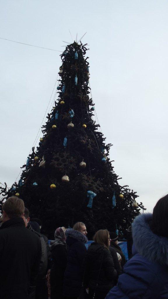 Открытие Новогодней елки в Димитрове (фото) - фото 5