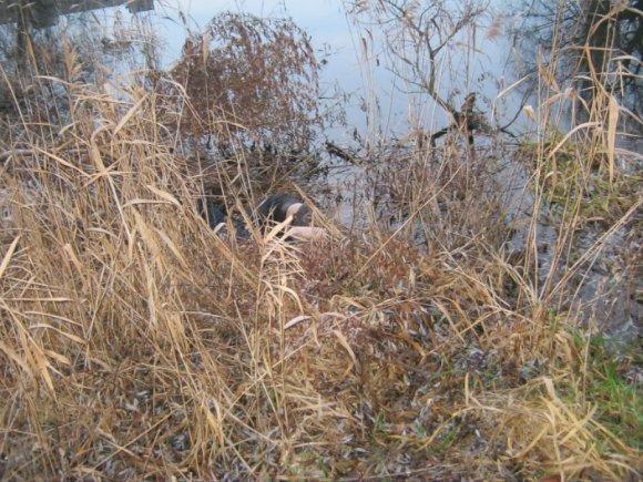 На Кировоградщине нашли тело избитого до смерти человека (ФОТО) (фото) - фото 1