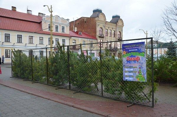 Фоторепортаж: новогодняя ярмарка в центре Гродно собирает большие очереди, фото-15