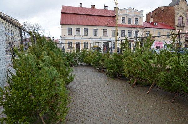Фоторепортаж: новогодняя ярмарка в центре Гродно собирает большие очереди, фото-16