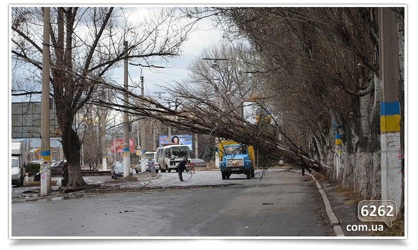 Тополь упал на ул. К.Мракса(фотфакт) (фото) - фото 1