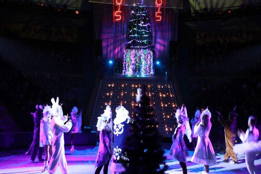 Громкая премьера в цирке Запорожья: восторг зрителя, шквал аплодисментов и буря эмоций (ФОТО), фото-6
