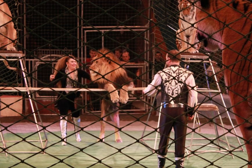Громкая премьера в цирке Запорожья: восторг зрителя, шквал аплодисментов и буря эмоций (ФОТО), фото-8