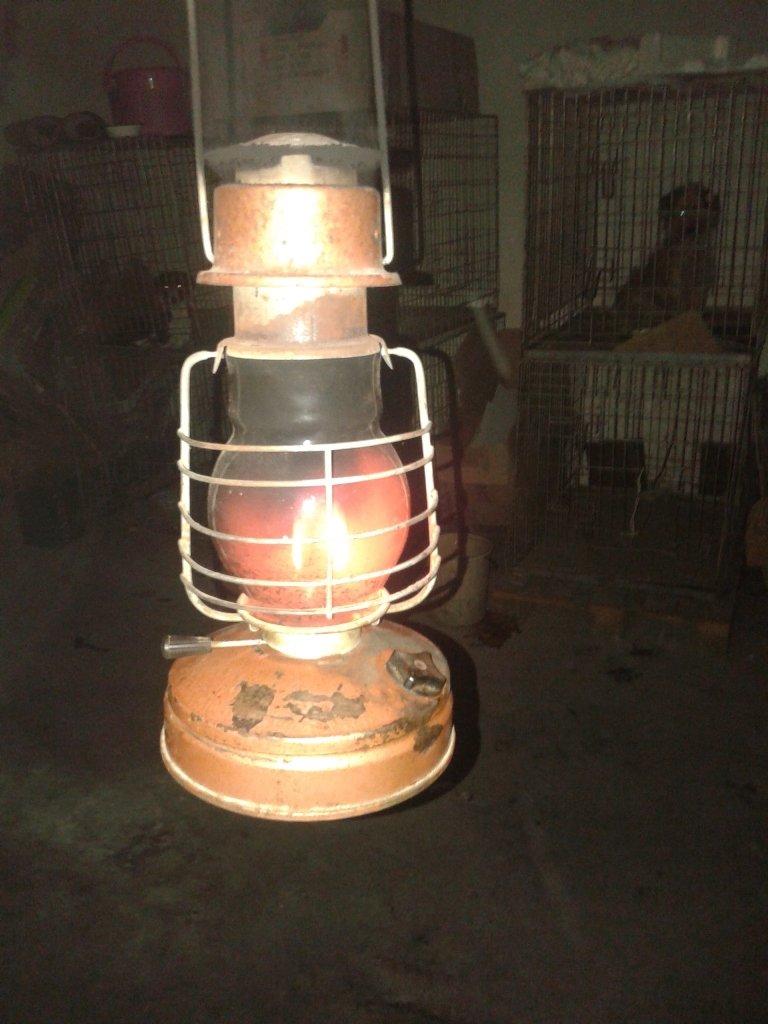 Артемовская стерилизационная площадка больше полугода выживает без электричества, фото-1