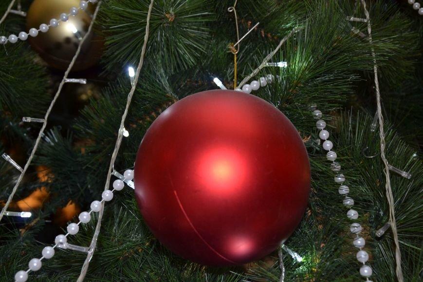 У Труханова пожалели голубую ель и поставили искусственную елку (ФОТО), фото-2