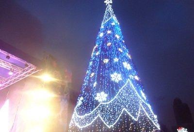 В Донецке открыли главную елку (фото) - фото 2