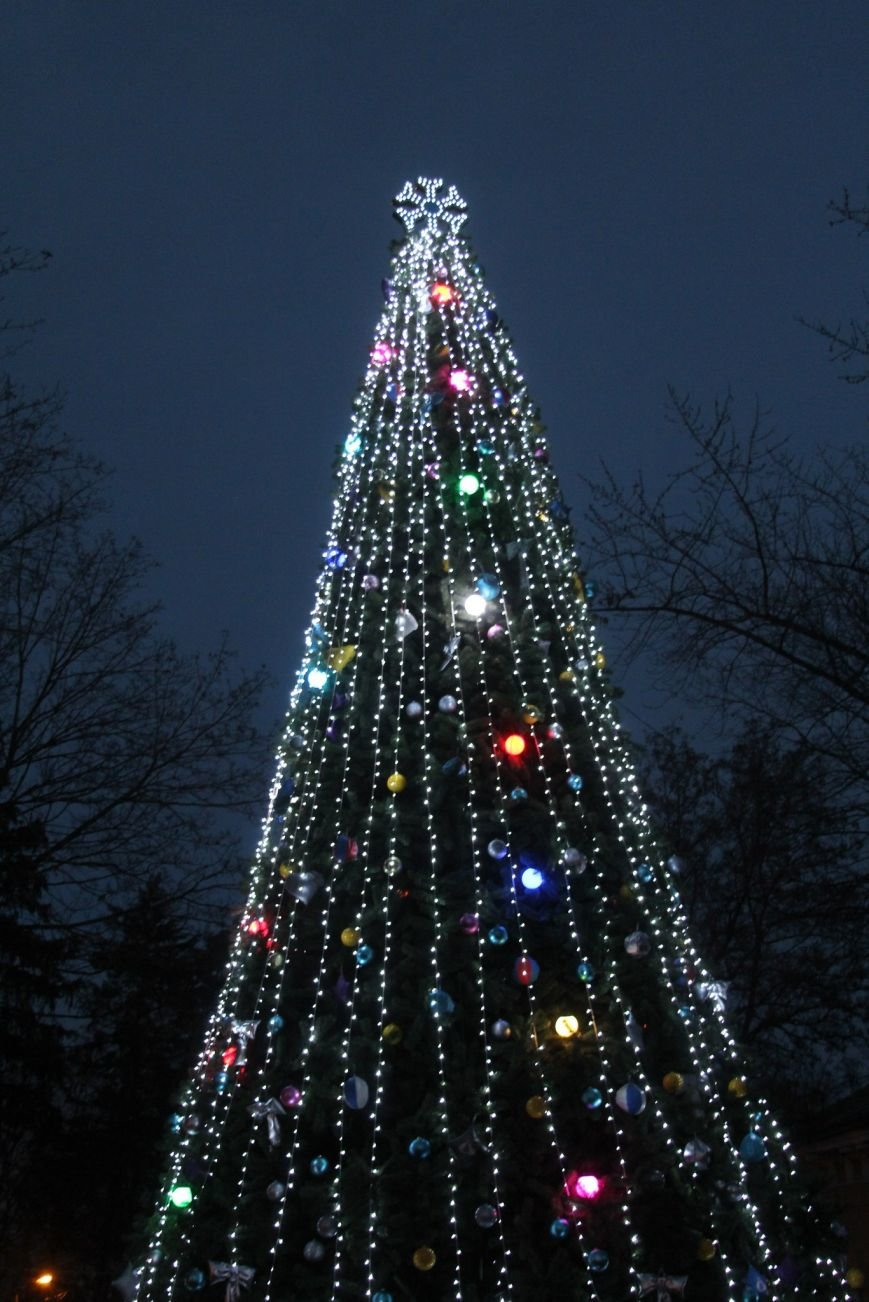 В Днепропетровске в парке Шевченко елка откыралась фаер-шоу (фото) - фото 2