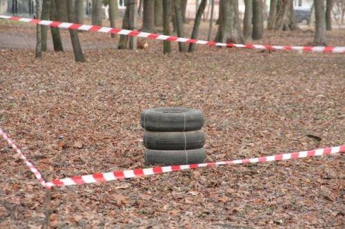 На Черниговщине в городском парке нашли боевые гранаты, фото-2