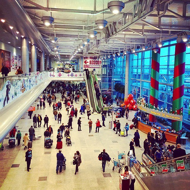 В Аэропорту Домодедово оперативно раскрыта кража (фото) - фото 1