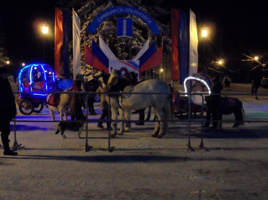 На площади Ленина прошло открытие новогодней елки, фото-3