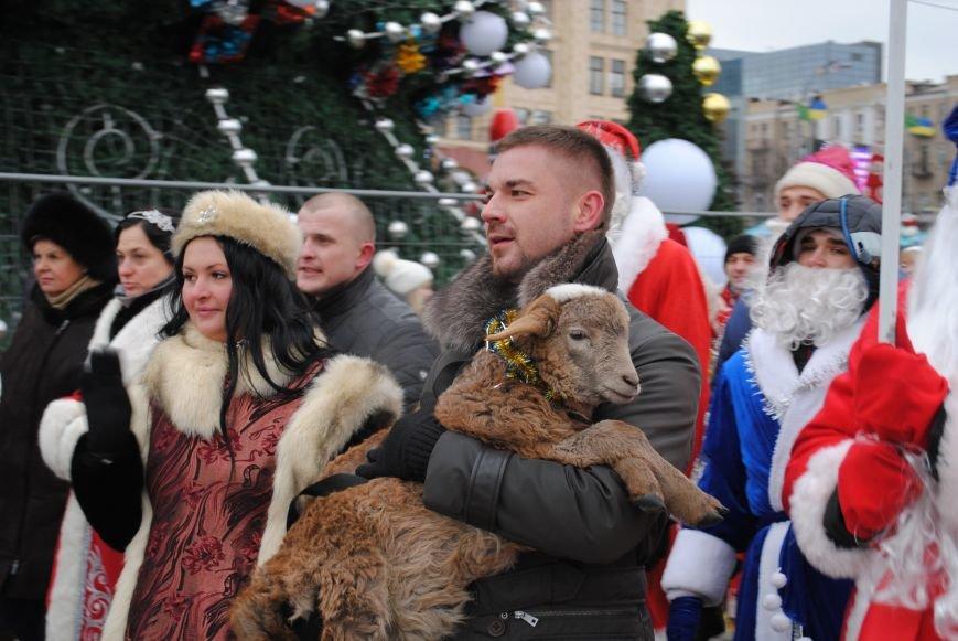 По харьковским улицам прошли полтысячи Дедов Морозов (ФОТО+ВИДЕО), фото-13