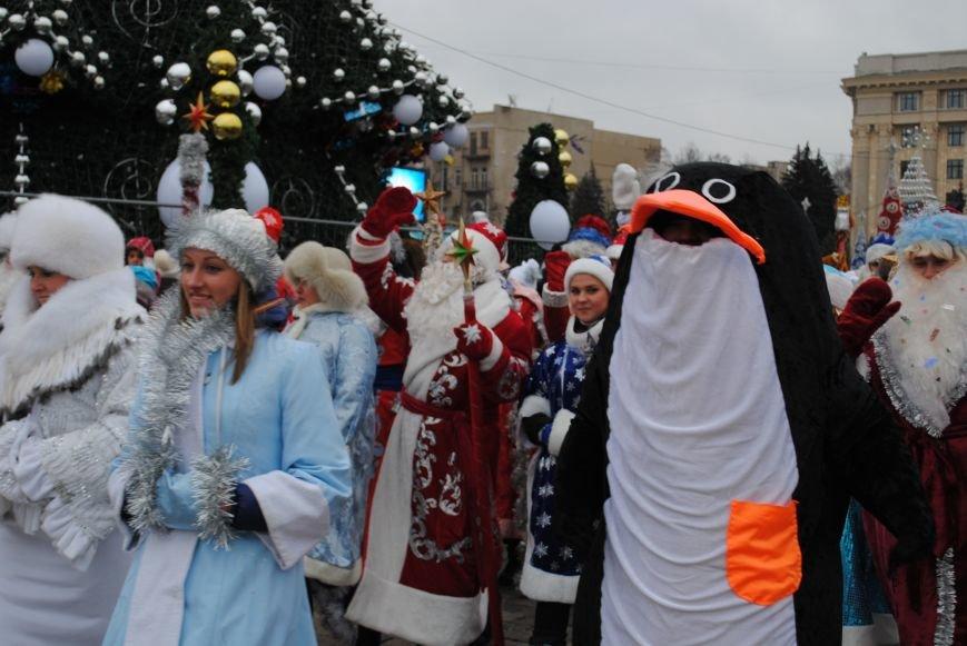 По харьковским улицам прошли полтысячи Дедов Морозов (ФОТО+ВИДЕО), фото-15