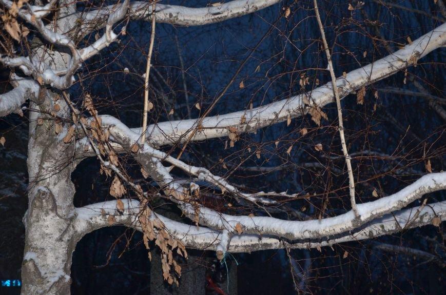 Мариуполь закружила зима (ФОТОРЕПОРТАЖ), фото-33