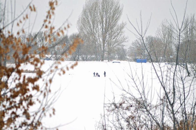 В последние выходные перед Новым годом Белгород полностью покрылся снегом, фото-5
