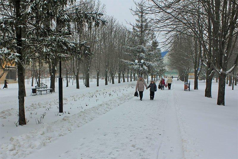 В последние выходные перед Новым годом Белгород полностью покрылся снегом, фото-3