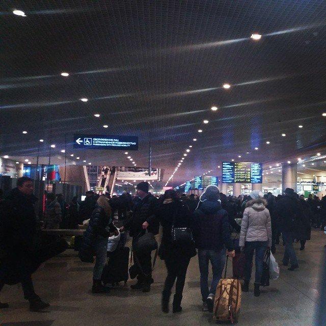 В Новогодние каникулы аэропорт Домодедово ожидает более 1 000 000 пассажиров (фото) - фото 2