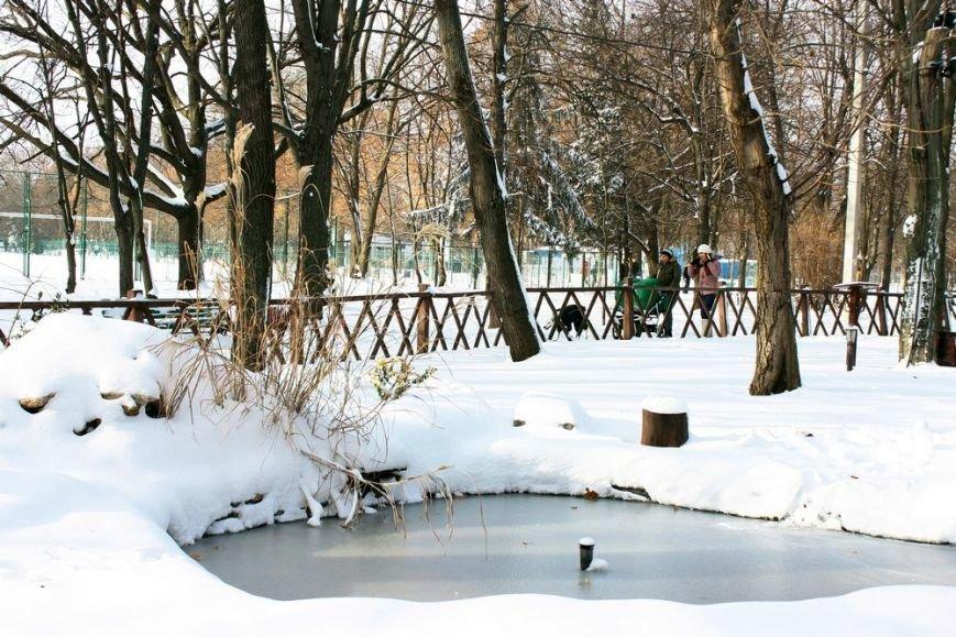 Предновогодняя красота заснеженной Одессы (ФОТОРЕПОРТАЖ) (фото) - фото 1