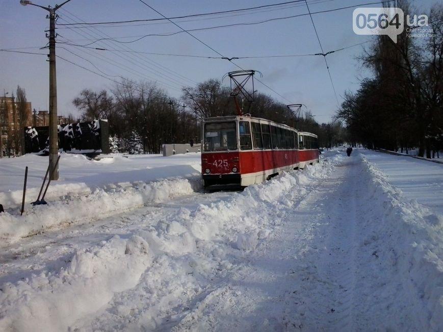 В Кривом Роге охраняемые «спортсменами» депутаты горсовета приняли городской бюджет, а в городе после снегопада транспортный коллапс (фото) - фото 4
