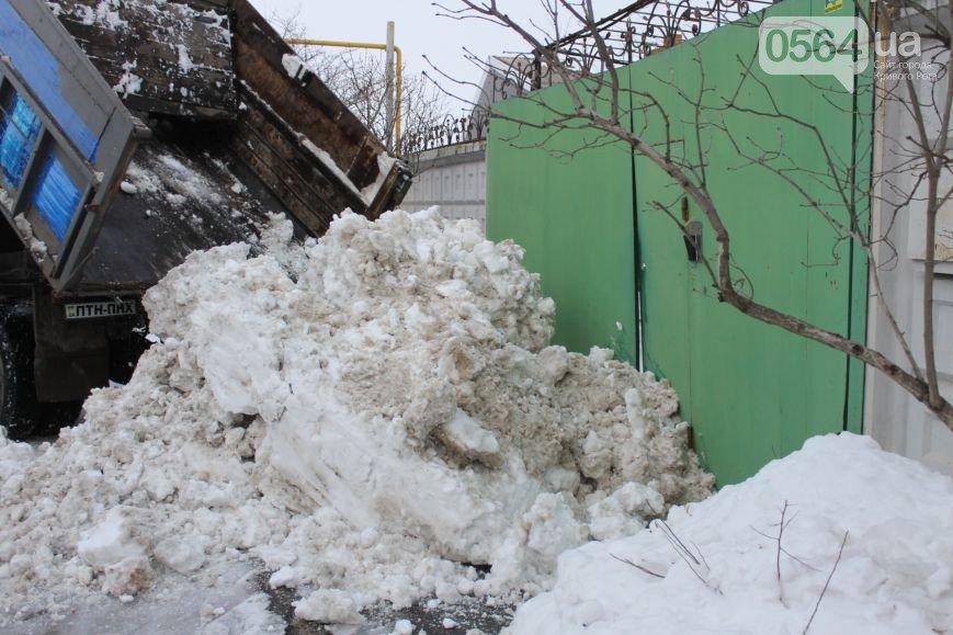 В Кривом Роге активисты высыпали под особняк мэра 5 т снега, поймали наркоторговцев и «черных металлистов» (фото) - фото 1
