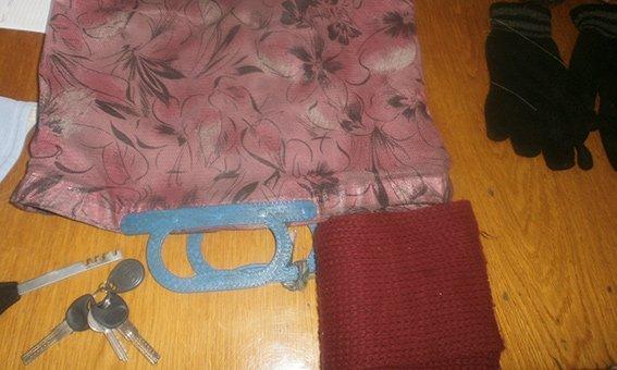 В Красноармейске на вокзале задержали двух местных жителей, которые украли у женщины сумку с деньгами (фото) - фото 1