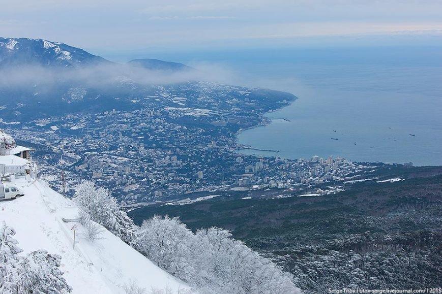 Ялтинская зимняя сказка- 2015 в фотографиях (фото) - фото 1