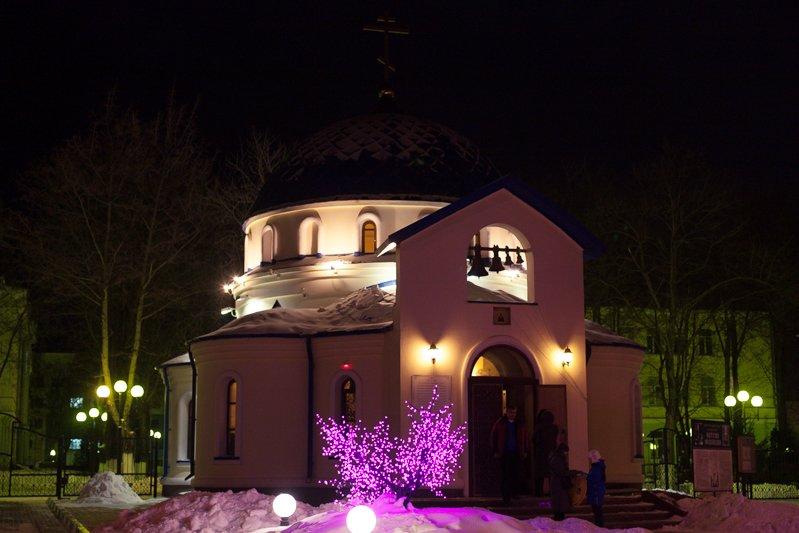 Ночь перед Рождеством. В православных храмах Белгорода прошли праздничные службы, фото-1