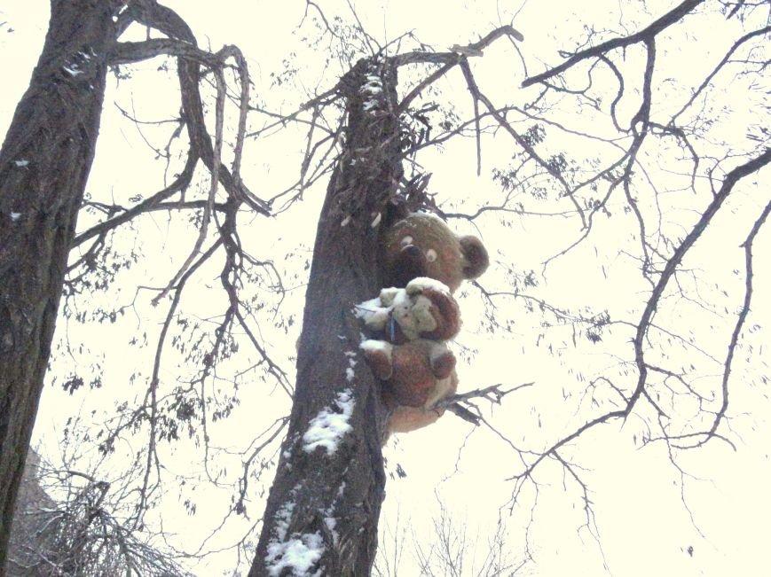 В Мариуполе к Рождеству на деревьях выросли игрушки (ФОТОФАКТ) (фото) - фото 1