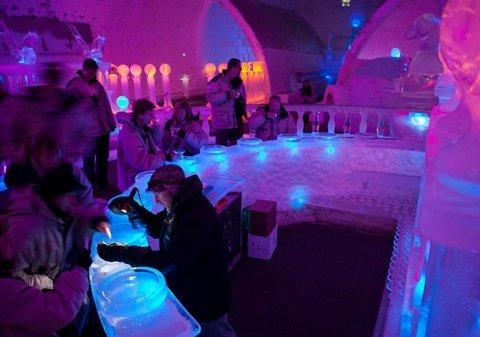 Невероятные ледяные отели (фото) (фото) - фото 3