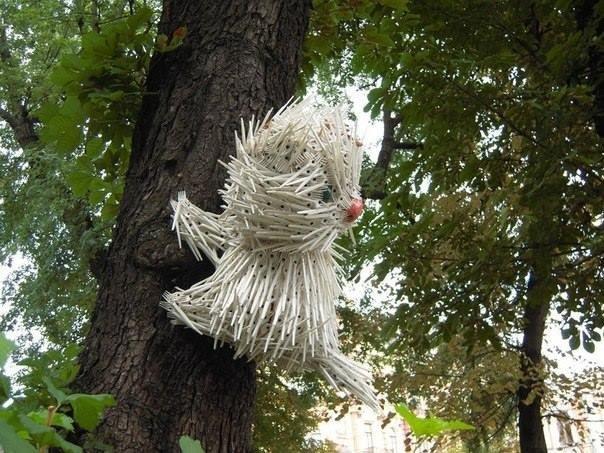 В столице на дереве поселился необычный кот (ФОТО) (фото) - фото 1