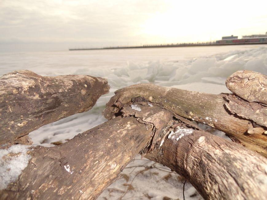 Фотопятница: «Ледниковый период. Уникальная выставка гениального скульптора» (фото) - фото 11
