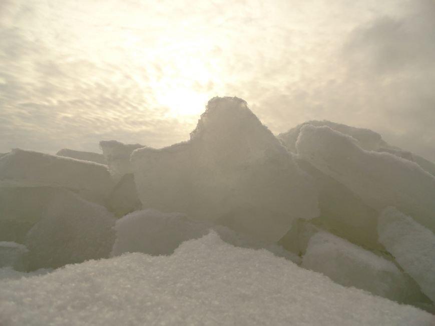 Фотопятница: «Ледниковый период. Уникальная выставка гениального скульптора» (фото) - фото 4