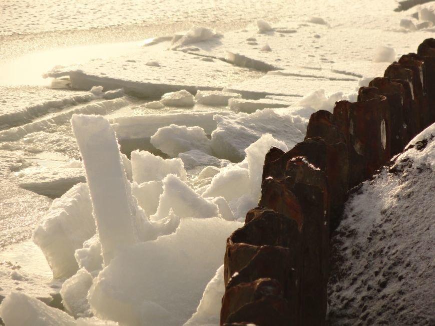 Фотопятница: «Ледниковый период. Уникальная выставка гениального скульптора» (фото) - фото 8