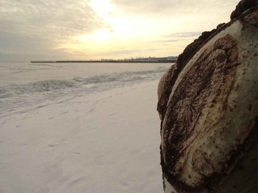 Фотопятница: «Ледниковый период. Уникальная выставка гениального скульптора» (фото) - фото 3