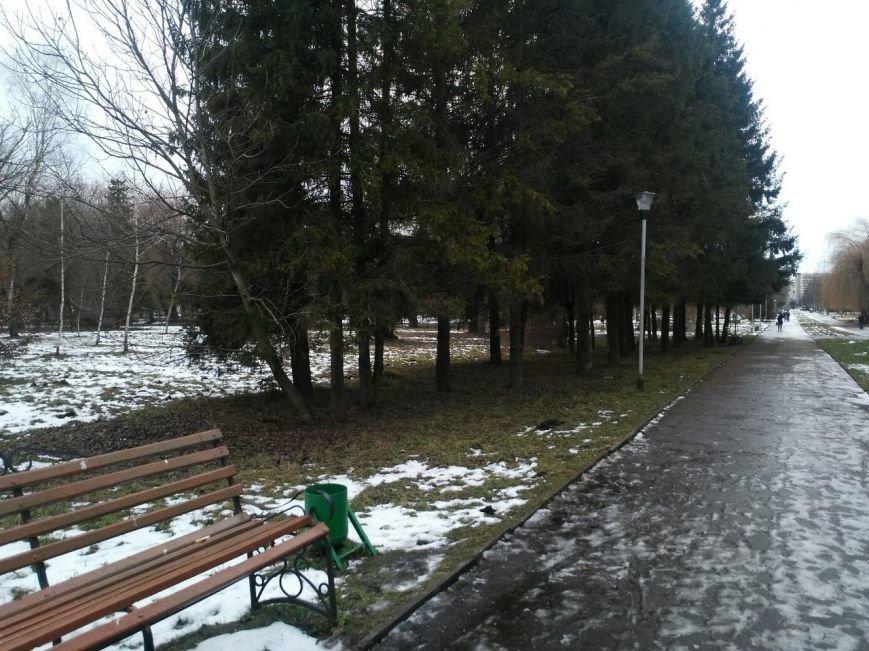 У Тернополі в одному з парків валяються десятки трупів (фото) (фото) - фото 1