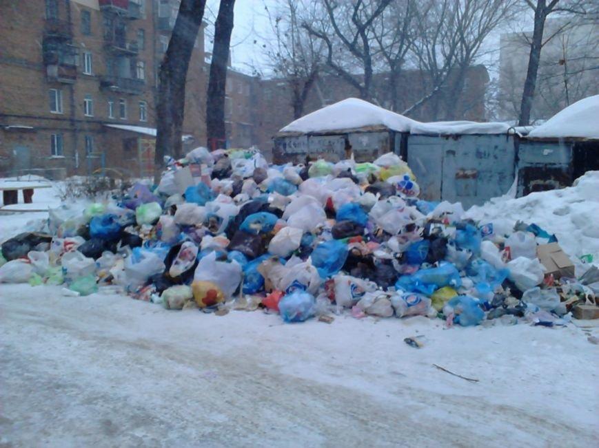 Дворы Днепропетровска утопают в мусоре. Коммунальщики убирать не спешат, фото-1