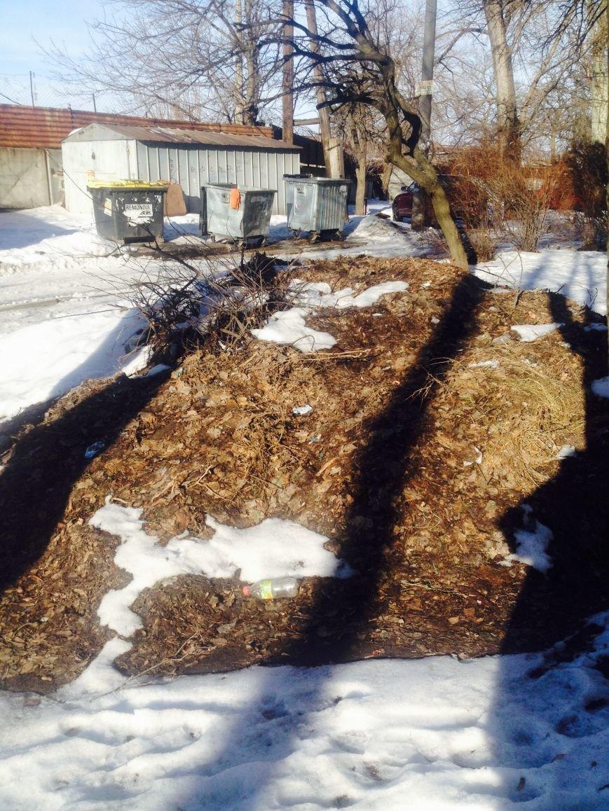 ФОТОФАКТ: В Запорожье рядом КП «Основание» лежат кучи листвы (фото) - фото 1