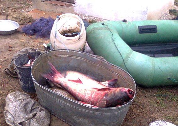 В Кировоградской области поймали браконьеров (фото) (фото) - фото 1