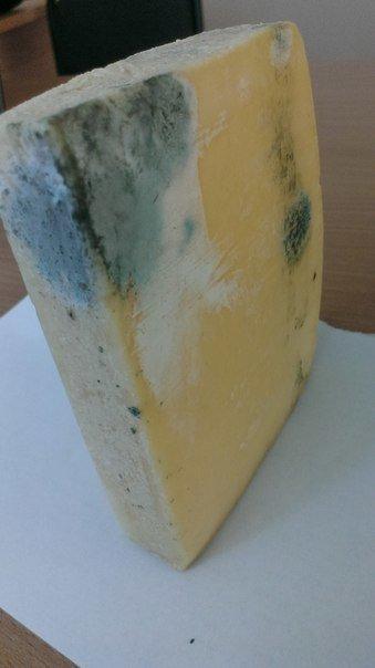 В николаевском супермаркете продают «гнилой» сыр (ФОТОФАКТ), фото-3