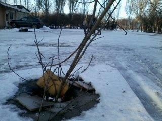 Открытые канализационные люки возле школ  в Кривом Роге «закрывают» фанерой и веточками (ФОТОФАКТ) (фото) - фото 2
