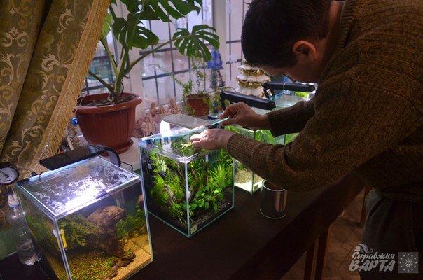 Де у Львові можна поспостерігати за життям мурах та риб? (ФОТОРЕПОРТАЖ) (фото) - фото 8