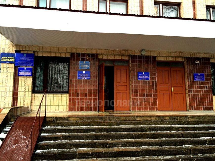 У Тернополі «під носом» у чиновників вже тиждень лежить здохла бородяча собака (фото) (фото) - фото 1