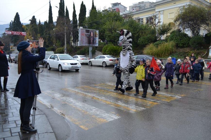 Внимание, на дорогах Ялты  – «Зебра!», фото-1