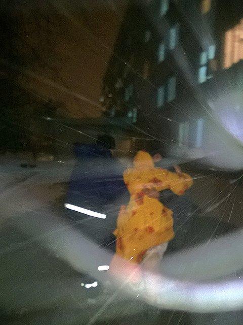 Снежный апокалипсис (ФОТО) (фото) - фото 6