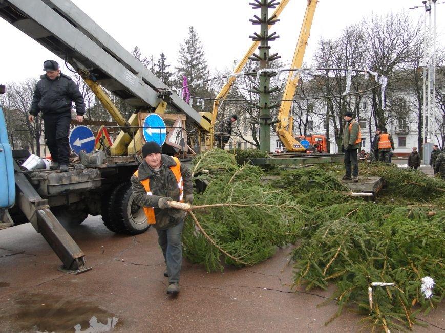Головну ялинку Хмельницького переробили на тирсу (фото) - фото 1