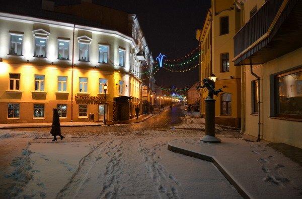 В Гродно вновь пришел снег и холод: до конца недели похолодает до -12 (Фото), фото-4