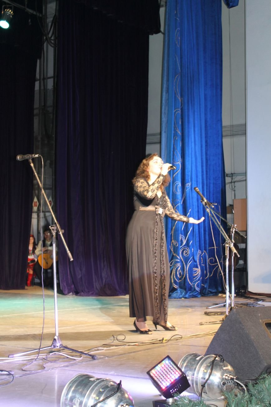 В Красноармейске состоялся концерт ко Дню Соборности Украины, фото-4