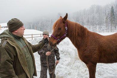 На Закарпатті відроджують загублену породу коней (ФОТО) (фото) - фото 1