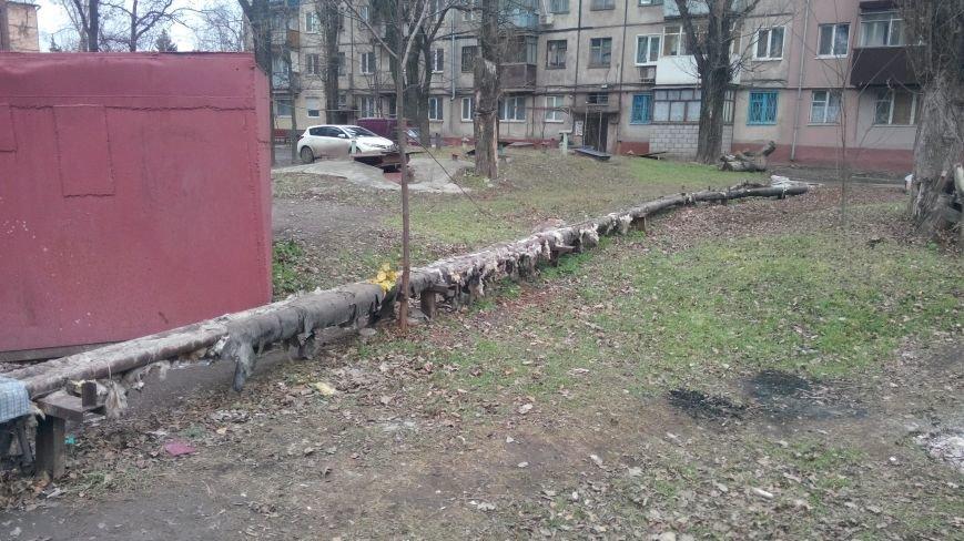 так было возле моего дома №48-2