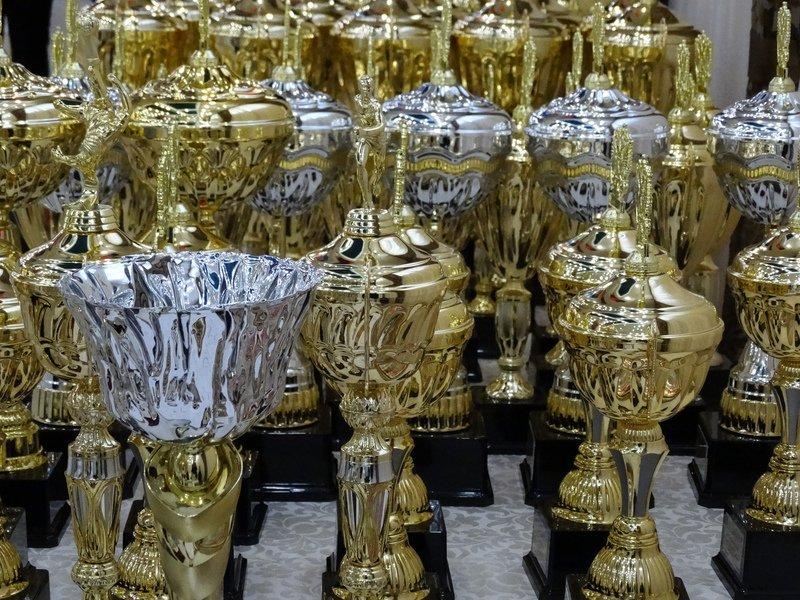 В Симферополе состоялся Бал чемпионов Крыма (ФОТО) (фото) - фото 8